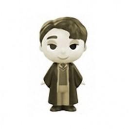 Mystery Mini Tom Riddle Sepia