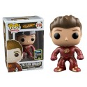 Funko The Flash Unmasked