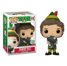 Funko Buddy Elf Raccoon