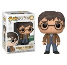 Funko Harry Potter with Two Wands