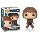 Funko Ron Weasley on Broom