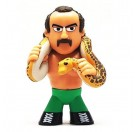 Mystery Mini Jake the Snake Roberts